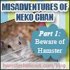 misadventures_of_neko_chan_p1_logo
