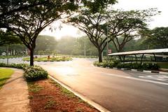 Sunrise Roundabout