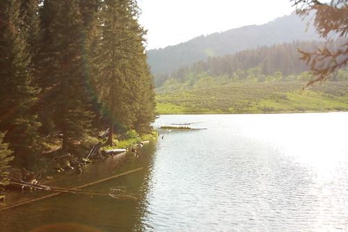 Montana June 208 119