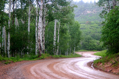 Colorado red dirt road (Outrageous Images) Tags: road green rain yahoo google colorado mud curves deer dirt technorati aspen curve raining ping slippery bing countryroad facebook scurve icerocket bendintheroad supershot gladepark twitter mudsprings arainyday coloradophotographer interesting7 outrageousimages davewadsworth curveyroad canyoufindthedeerintheaspenstand cominroundthebend sundaymorningroadtrip coloradorain pinyonmesa doublescurve bingping dbwbiz placesthatcansaveyoursanity grandvalleybucketlist