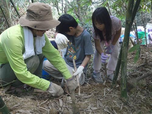 你拍攝的 40老師帶領一起挖竹筍。