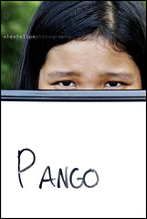 Pango means flat nosed.