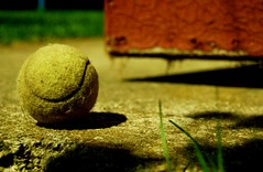 552 miles since (lille abe) Tags: summer vacation texture grass nikon dof bokeh poland tennisball micha iawa hbw pachniewski
