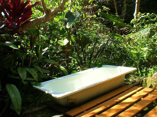 07 bush bath