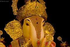 Ganeshotsav 2008 (soumitra911) Tags: india ganesh maharashtra utsav pune picnik ganpati dagdusheth ganeshotsav  soumitra inamdar  halwai soumitra911