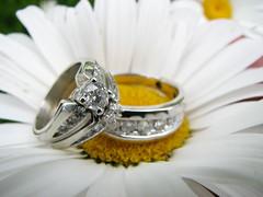 The Precious Rings