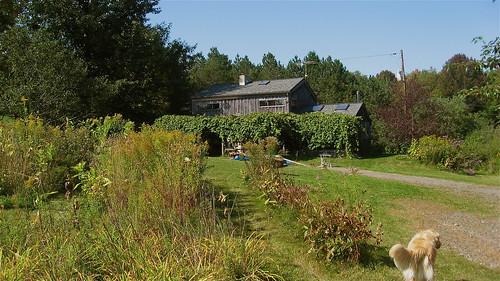 Salo's Farm