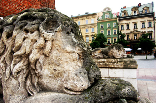 Krakow_SleepingLions
