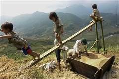 Happiness (NaPix -- (Time out)) Tags: family black kids asia southeastasia rice farming harvest happiness vietnam explore emotions sapa hmong laochai paddies tavan explorefrontpage theworldtroughmyeyes visiongroup napix vision100 hoangliensonmountainrange mounghoavalley visionquality