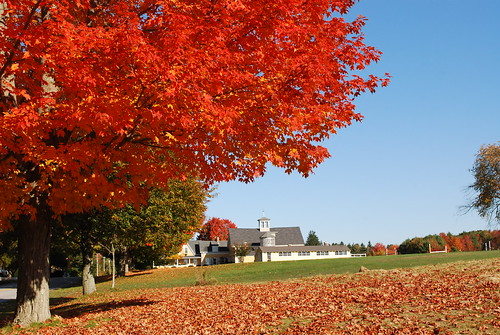 Autumn, Kennebunkport by Kportimages.