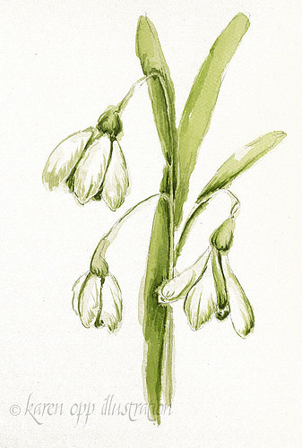 snowdrop painting 2 by you.