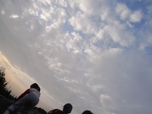 你拍攝的 60天空飛翔的鷹燕。