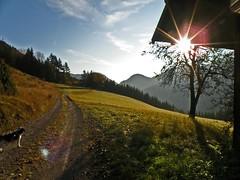 """Herbstmorgen am """"Kloatzenberg"""" (ruflo) Tags: austria sterreich krnten carinthia oesterreich villach carinzia kaernten kreuzen paternion olympussp570uz kloatzenberg"""