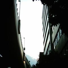 【写真】Sunshine (MiniDigi)