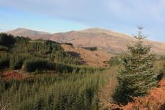 Ben Ledi (Mac ind g) Tags: autumn mountain marilyn walking landscape scotland trossachs corbett aberfoyle benledi ledi queenelizabethforestpark lochlomondandthetrossachsnationalpark