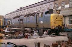 55005 Doncaster Works 3.5.81 (Paul Bettany) Tags: diesel napier doncaster deltic englishelectric brel class55 55005 type5