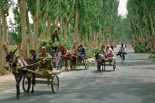 Que deben saber los viajes a china