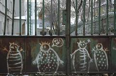 Hej hej (Mirovich) Tags: november nikon d70 grafiti slovakia dslr 2008 bratislava mir hejhej