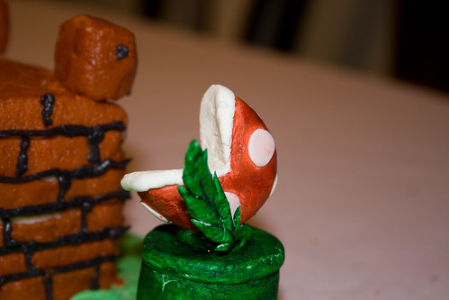 Mario Bday Cake - 014 - web