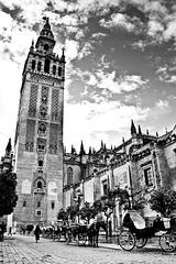 Catedral de Sevilla by Justin Korn