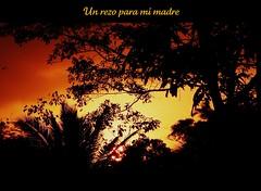 (Click de Kika) Tags: amor amanecer kika sentimientos expresiones mimadre vosplusbellesphotos lagunadelasgarzas moralesizabal