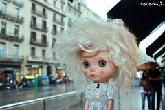 Indie se enfada cuando llueve...
