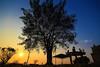 Sunrise (Shivany28) Tags: tree nature silhouette sunrise canon landscape temple eos malaysia sigma1020mm negerisembilan 60d gatco canoneos60d shivany28