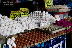 Various eggs for sale