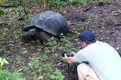 joost en schildpad