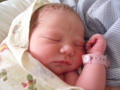 Chloe (Julie's Digital Photo Art) Tags: baby infant newborn picnik grandbaby