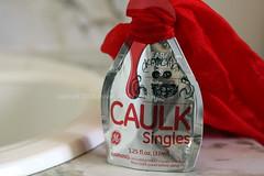 GE Caulk Singles Challenge.