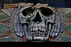 skull by Leo Reynolds, on Flickr