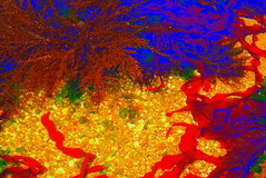 SONHO COLORIDO - COLOUR DREAM (@uroraboreal) Tags: sea water água artisticexpression marpicado auroraboreal1
