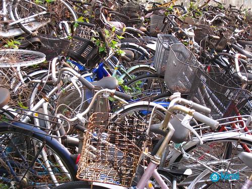 bicleta bici jitensha