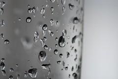 Drops (A.al-Muzaini) Tags: water drops nikon ab abdullah d60 aplusphoto almuzaini