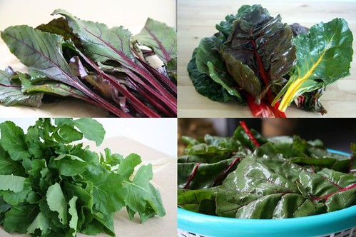 Greens: beet leaves, rainbow chard, radish greens, red chard