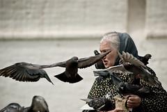la donna dei piccioni ([V1V1]) Tags: woman fly donna wings nikon russia moscow pigeon ali oldwoman aged nikkor mosca colombe lightroom piccioni signora colombi nikond80 sigma1770mmf2845dcmacro v1v1 v1v14n4 vivianaisca v1v1elderly v1v1stolenshot v1v1colour v1v1moreshots