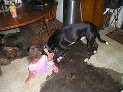 natalie and brego (sweetanabl0203) Tags: dogs kids grand childern