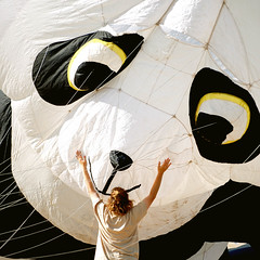 Give us a hug (only lines) Tags: kite beach festival kent panda margate