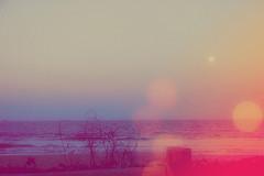 I Could Be Dreaming (Helo Blue Sky*) Tags: home brasil amores helo brav