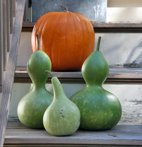 gourds on the steps
