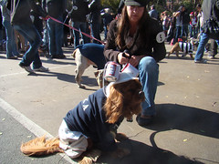 nyc newyorkcity dog halloween cane photo foto image manhattan snapshot picture fraternity frat photograph gothamist pup pooch 2008 犬 yorkville uppereastside howloween 狗 carlschurzpark ridicolo carino dogparade fratboy dogsincostumes dogcostume halloweendogparade dogincostume dressedupdog halloweenhowl mclovin canetravestito howloweendogparade october192008 fratboyhalloweencostume fratboyhalloweendogcostume fratboydog halloweencostumesfordogs