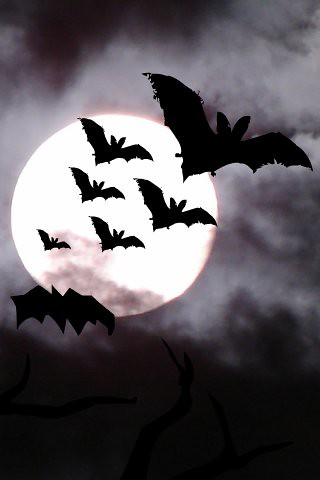 Moon, Clouds and Bats (for iPhone)