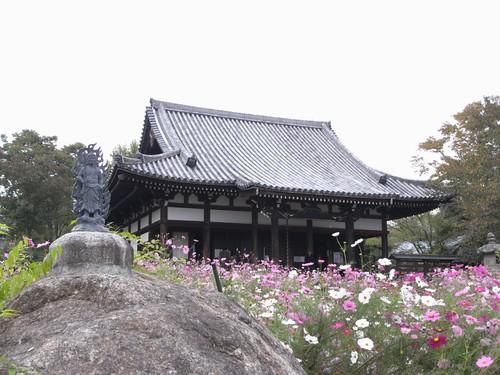 般若寺(本堂)-08