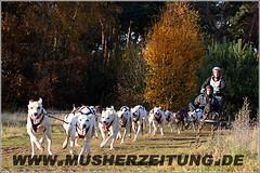 Meister-aus-Hessen-Team