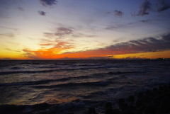 Sunset (24cut) Tags: japan tokyo fuji makuhari