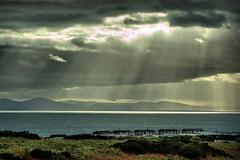 Burrowhead (Dan Baillie) Tags: winter sea sky storm scotland nikon portfolio whithorn dumfriesandgalloway puddock isleofwhithorn wigtownshire burrowhead anawesomeshot danbaillie bailliephotographycouk bailliephotography wigtownshirephotographer dumfriesandgallowayphotography