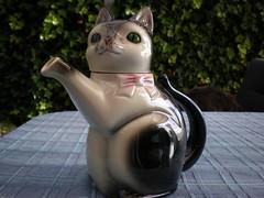 Kitten teapot (apparentlyjessy) Tags: pink white black cute cat vintage kitten treasure kitty whiskers kettle bow teapot