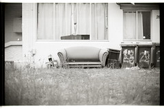Lawn Couch (Geoff A Roberts) Tags: street leica photography 50mm photo nikon photographer kodak scanner geoff sydney streetphotography australia super x m 150 mp noctilux roberts 5000 tri coolscan streetphotographer geoffroberts