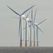 Lynn windfarm